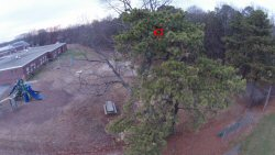 The little white dot in the center of the red circle is my Hubsan X4 H107L that kind of got away from me on a windy day.  I was finally able to locate it in that tree with the help of my Phantom 2 Vision, but I know I'll never be able to retrieve the damned thing...